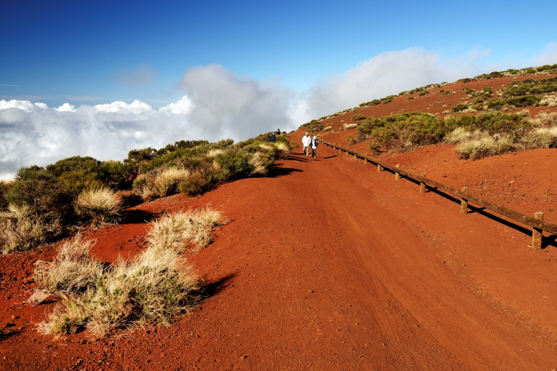 Road in Teide National Park, Tenerife, Canary Islands, Spain